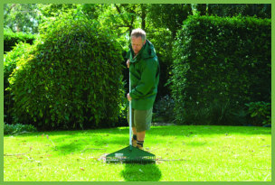 lawn care after flooding