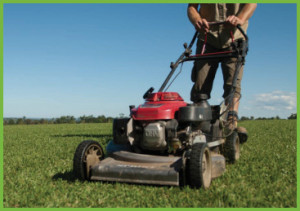 Mowing Turf Tips