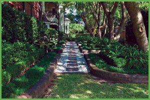 Small Lawn Area