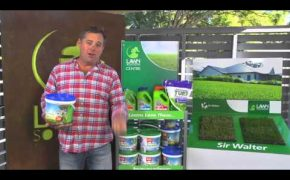 Lawn Solution Centres