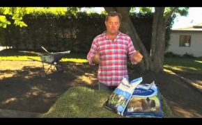 Gypsum and Lime for your lawn preparation